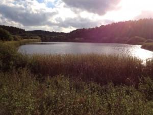Gåtur om søerne2 (Small)
